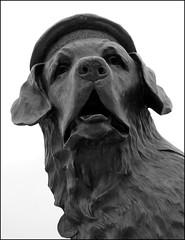 Bamse (ba's on the slates) Tags: statue scotland angus montrose royalty bamse dukeofyork unvieling