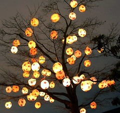 Lantern Tree (adraskoy) Tags: travel winter plant canada tree 2004 festival vancouver chinatown december branches chinese explore solstice lantern lampion