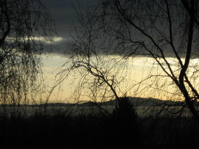 fog_sunrise