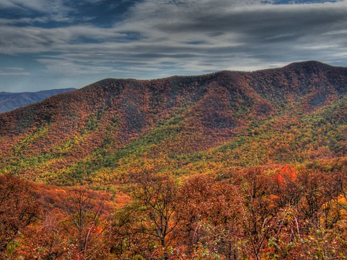 Autumn in the Blue Ridge