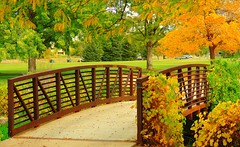 .Love Garden. (JAMALadi) Tags: bridge trees green fall nature beautiful leaves garden oragen rusy favoritegarden