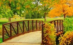 .Love Garden. (JAMALadi) Tags: bridge trees green fall nature beautiful leaves garden oragen rusy favoritegarden