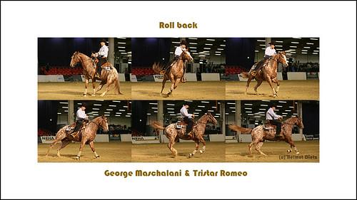 Westernreiten: George Maschalani & Romeo (Appaloosa) beim Roll back