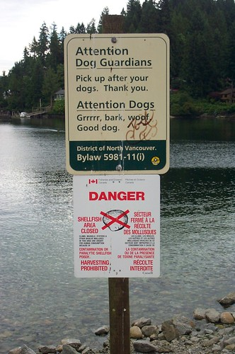 Dogs can Read in North Vancouver