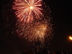 Fireworks (Bartlett) Tags: fireworks alexandrapalace bonfirenight guyfawkesnight