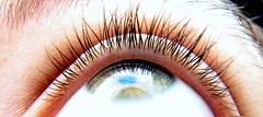 Point of view (Shemer) Tags: iris macro reflection green eye texture wow reflex eyelashes eyelash lash window2thesoul windowtothesoul