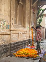Marigold stringing man, Bombay