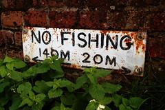 No Fishing (Andrew Stawarz) Tags: sign nikon published d70s nofishing flatfordmill 24mmf28dafnikkor