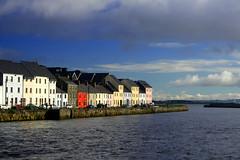 Galway (Phalinn Ooi) Tags: ireland galway birds malaysia raya kuih galwaybay nuig rivercorrib phalinn