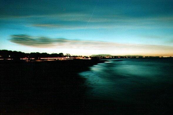 The Ventura Wharf at Night