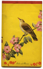 Pretty Paper (Katey Nicosia) Tags: flowers bird yellow vintage paper pretty ephemera