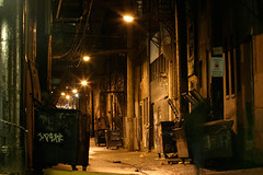abbott st. alley between hastings and pender (♫ marc_l'esperance) Tags: longexposure autumn windows reflection fall texture water sign night vancouver trash dumpster canon person eos lights dangerous garbage alley bars downtown doors rainyday risk streetlights tripod © 2006 row motionblur wires 10d fireescape dumpsters existinglight poles ladder grating eastside uncropped allrightsreserved skid selftimer entryways cml gvrd nopostproduction canonef70200mmf28lusm ef70200mmf28l canon70200f28l artificialillumination
