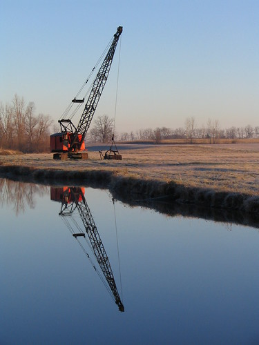 Crane in the Pond 01