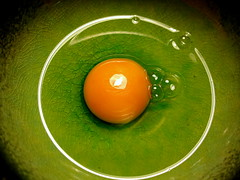 Round (Lili Vieira de Carvalho) Tags: food color macro verde green yellow club circle 500v20f egg bowl amarelo round bubble crculo yolk ovo sixsixsix