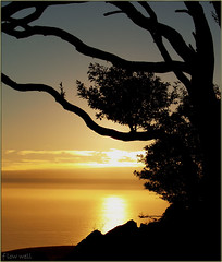 silhouetted-solitude (strangemagee) Tags: ocean sunset home nature silhouette view goingdown darkshapes outstandingshots