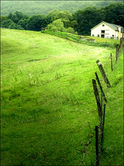 Green (ilina s) Tags: trees white house green nature grass barn fence happy daylight day connecticut hill peaceful soe flickrdiamond ilinas cottonsunday