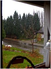 win1 (Keith.Fulton) Tags: brussels cold rain weather belgium tervuren fulton fs krfulton krfultonphotography fultonimages fultonphotography