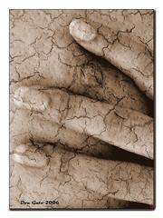 Crushed / Desgarrada - by Don_Gato (LoFi Photography)