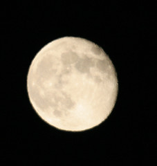 The moon last night (Gunnlaugur) Tags: moon night circle sphere crater