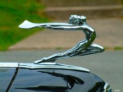 1934 Buick Club Sedan (kenmojr) Tags: cars antique autos hoodornaments automobiles vintagecars krm kenmojr