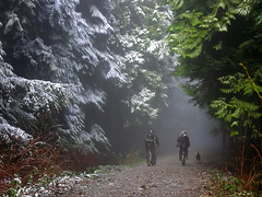 Foggy climb I (Euan Forrester) Tags: snow bike fog fromme sheldon interestingness298 i500 explore24jan07 brianbrittain