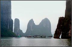 FLOATING_003 (TTHP805) Tags: afternoon foggy vietnam nikonf3hp halong halongbay floatingvillage 50mmf14ais quangninh ektachromee100s