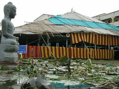 Dhammakranti   meditation 'pandal' by lotus pond