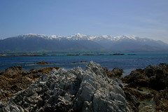 Where the mountians meet the sea (Leon Sammartino) Tags: new blue sea mountains geotagged canterbury zealand whales kaikoura ricks cluffs geolat430431 geolon173086