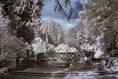 Cordes Fountain (iEiEi) Tags: friedhof monochrome germany ir deutschland nikon cemetary brunnen hamburg nikond100 infrared d100 nikkor infra ohlsdorf cordes falsecolor infrarot infrarosso infrarouge interestingness29 i500 28mmf35pcais falschfarben flickrexplore20061104