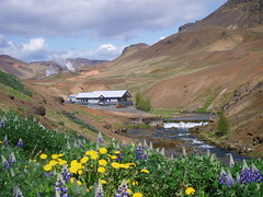 Hverageri - Iceland (sigfus.sigmundsson) Tags: travel summer hot flower nature water beautiful hotel iceland frost steam hotspring geothermal funi landscae hverageri hveragerdi supershot landscapebfv1 aplusphoto frostogfuni