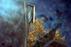 (akiruna) Tags: blue autumn sunset urban house reflection tree window nature water netherlands leaves yellow lens puddle bravo utrecht indigo surreal urbannature dreamy unfocused akiruna haphazart annemiehiele wwwannemiehielenl annemiehielenl haphazartindigo