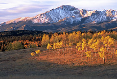 Pikes Peak and Aspens: East of Woodland Park, Colorado (CO) (Floyd Muad'Dib) Tags: ranch autumn trees plants usa mountain plant mountains tree fall face leaves america geotagged us colorado unitedstates united north peak historic foliage southern co vegetation northamerica aspens pikes states peaks pike aspen northface pikespeak americanwest loy gulch woodlandpark historicsite historicsites woodlandparkco westernusa southerncolorado pikespike coloradoaspens woodlandparkcolorado schubarth pikespeakcolorado loygulch pikespeakco