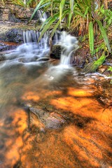Water Cascades (Garry - www.visionandimagination.com) Tags: landscape ilovenature waterfall oz australia qld aus springbrooknationalpark impressedbeauty visionandimagination wwwvisionandimaginationcom
