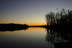 Evening Sky In November  (mightyquinninwky) Tags: trees reflection nature geotagged ilovenature pond perfect 10 5 kentucky lovely1 25 lexingtonky richmondroad 500 20 eveningsky 1000 1on1 fayettecounty lovephotography centralkentucky 1on1photooftheday 123npdl p1f1 generouscomments cl33 brillianteyejewel geo:lat=37989764 geo:lon=84434371 jasonpresser 11223344556677