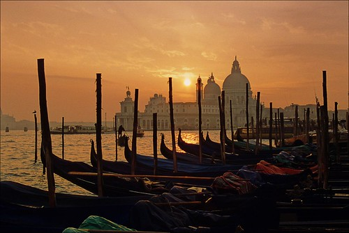 Gondolas line up in Venice at sunset