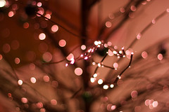 Christmas Lights (Elinesca) Tags: christmas red abstract lights c pcard bokehphotooftheday bokehsonicedec2006 macromag