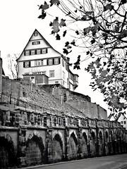 Stadt-Mauer Tbingen - City Walls of Tuebingen (eagle1effi) Tags: sx60 city walls stadtmauer mhlstrasse ppc reverse gespiegelt effiart2016 bw blackwhite