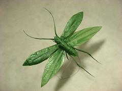 Flying Katydid (MABONA ORIGAMI) Tags: art paper insect flying origami fine grasshopper katydid origamichallenge origamichallenge1