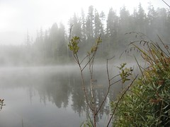 IMG_1282.JPG (Mike Bingley) Tags: autumn lake canada reflection fall water clouds dawn leaf moody bc britishcolumbia foggy atmosphere 2006 columbia vancouverisland british personalfaves