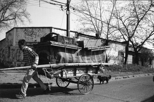 Cart and Driver and Street Dog, on a Quiet Day