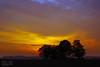 Morning Colors (Dietrich Bojko Photographie) Tags: tag3 taggedout sunrise d50 germany landscape deutschland topf50 bravo tag2 tag1 webinteger quality nikond50 brandenburg circularpolarizer 18mm outstandingshots hönow cokinp121m cokinp164 gnd4 abigfave
