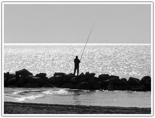 Fishing the Light...