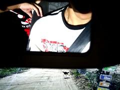 (Renato_Moraes) Tags: espelho galinha carro stio