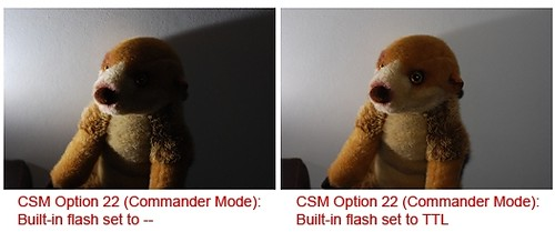 With and without illumination from the Nikon D80 popup flash in commander mode