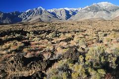 Cerro Gordo Buttermilk 226 (Steve Perdue) Tags: fallcolor 395 perdue easternsierra