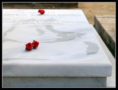 Todos los Santos - Rosas rojas (electron) Tags: barcelona cementerio rosa 50views roja totssants todoslossantos cementiri vermella 50club b01824345hdrbrm