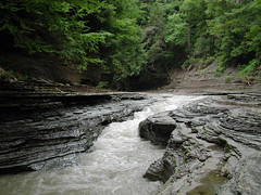 Zoar Valley, NY (Scott Kinmartin) Tags: valley westernnewyork zoar zoarvalley sacredland cattarauguscreek springvilleny sacredindiangrounds