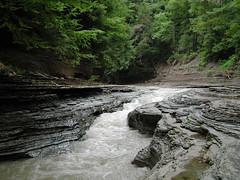 Zoar Valley, NY (Scott Kinmartin) Tags: valley westernnewyork zoar zoarvalley sacredland cattarauguscreek springvilleny sacredindiangrounds
