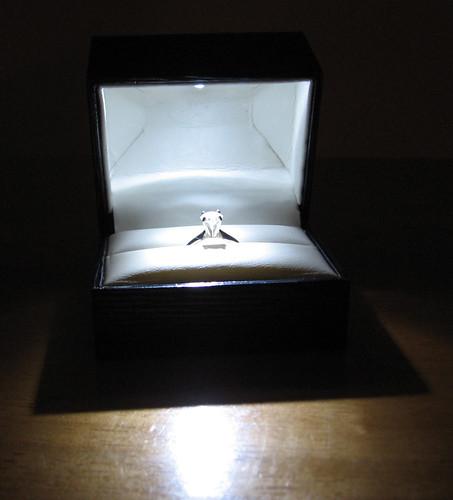 Engagement Ring [Photo 1]