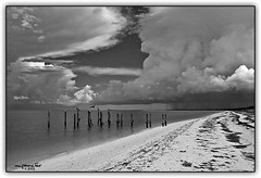 Summer Storm Over the Everglades (Michael Pancier Photography) Tags: summer blackandwhite storm monochrome weather clouds florida shoreline everglades beaches evergladesnationalpark floridaeverglades fineartphotography naturephotography seor thunderheads naturephotographer abigfave floridaphotographer pancier michaelpancier michaelpancierphotography capesable aplusphoto wwwmichaelpancierphotographycom seorcohiba